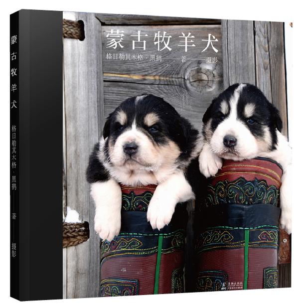 黑鹤:我的蒙古牧羊犬和草原-出版人杂志官网