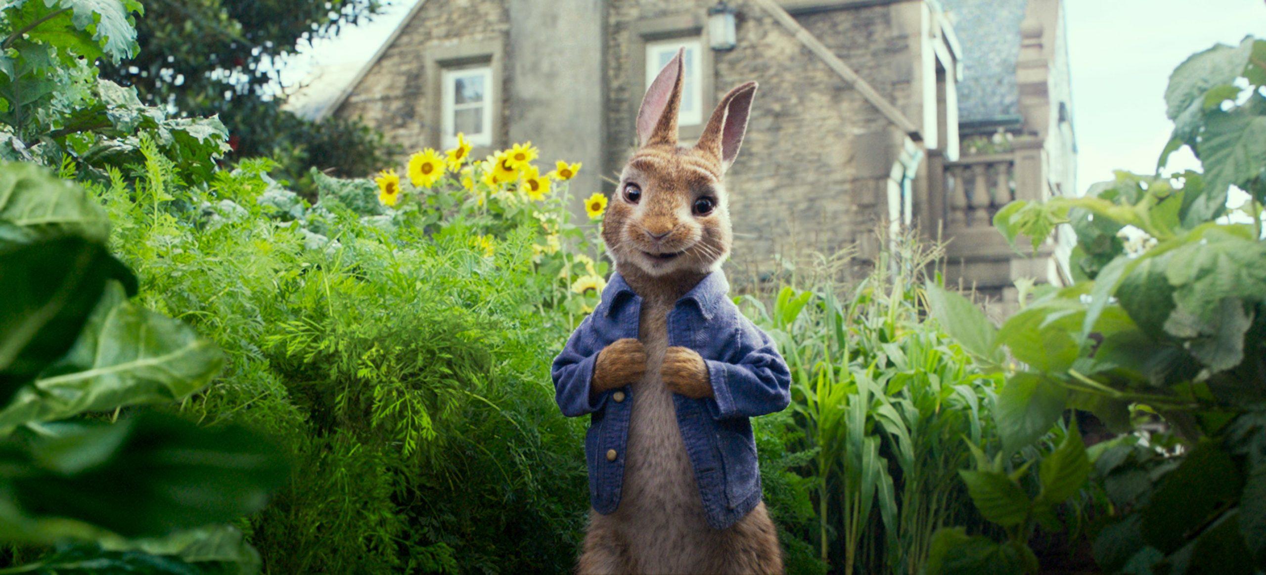《比得兔》热映,如何撬动数亿票房整合图书营销?