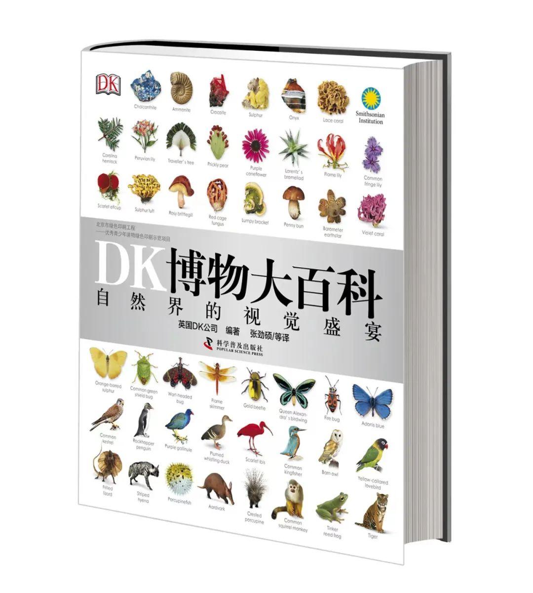 一直被模仿,为什么DK就是无法被超越?-出版人杂志官网